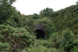Ravenscar Tunnel 2009.